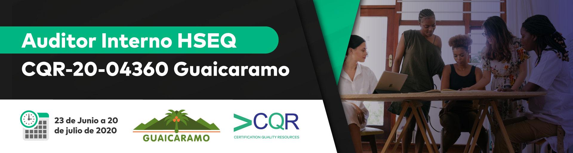 Auditor Interno HSEQ Guaicaramo